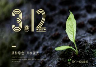 2021幼儿园小班植树节活动教案范文 植树节主题活动方案两篇