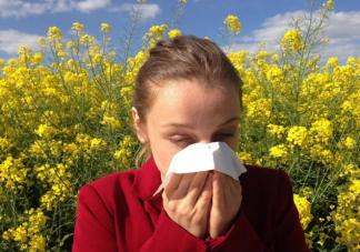 花粉过敏有多严重 花粉过敏最有效治疗方法是什么