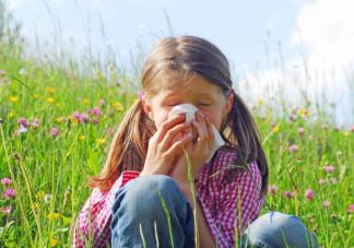 花粉过敏挂什么科 严重的花粉过敏有哪些后果