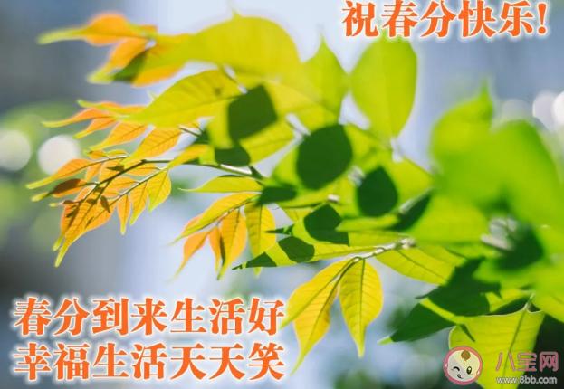 2021春分早安的祝福语 春分早安心语句子