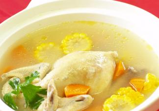 产后促进乳汁是吃公鸡还是母鸡 坐月子炖鸡汤选什么样的鸡营养好