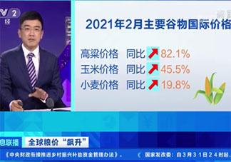全球粮价上涨是否影响中国人 为什么粮价上涨了