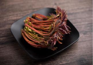 绿叶香椿和红叶香椿有什么不同 如何吃香椿更健康营养