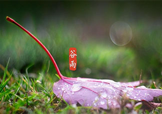 2021谷雨节气图片祝福语句子大全 2021谷雨文案祝福语图片说说
