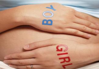 2021最新生男生女清宫图 怎么看清宫表上怀孕是男还是女