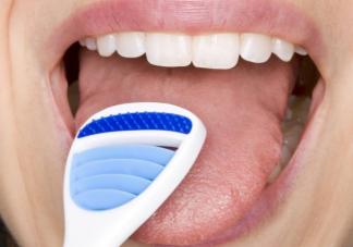 蚂蚁庄园6月11日问题答案 舌头也需要经常清洁吗