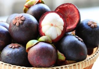 适合孩子夏季吃的应季水果汇总 怎么放心给孩子吃水果