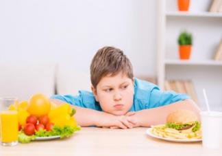 儿童肥胖受哪些方面原因影响 改善儿童肥胖的6个饮食规则