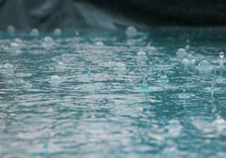 下雨天听见雨声后很容易平静心情是因为什么 蚂蚁庄园7月1日答案解析