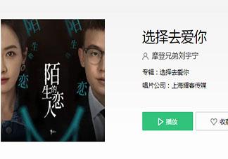 刘宇宁新歌《选择去爱你》歌词是什么 《选择去爱你》完整版歌词在线听歌