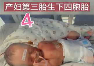新乡一产妇第三胎生下龙凤四胞胎 怀了多胞胎要注意些什么