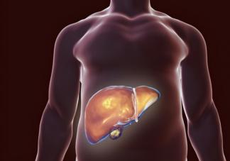 甲乙丙丁戊五种肝炎有什么不同 哪些不良习惯容易引发肝炎