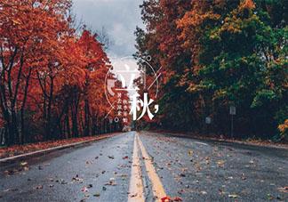 立秋节气温暖治愈唯美文案句子 立秋之时暖心治愈的说说