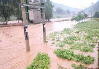 洪灾后猪肉蔬菜会涨价吗 洪灾对粮食的影响有多大