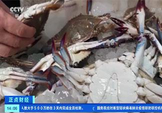 梭子蟹比去年便宜30% 梭子蟹有什么营养价值