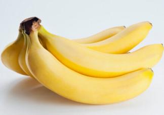 减肥能把香蕉当主食吃吗 减肥的人能吃香蕉吗