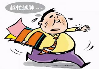 人为什么会越累越胖 上班族如何避免压力型肥胖