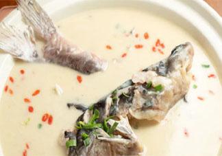 如何炖出奶白鲜美的鱼汤 鱼汤怎么做好喝