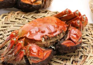 螃蟹的正确吃法是什么 什么样的螃蟹千万不能吃