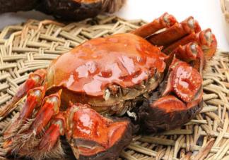 怎样辨识阳澄湖大闸蟹的真假 怎么挑选优质的大闸蟹