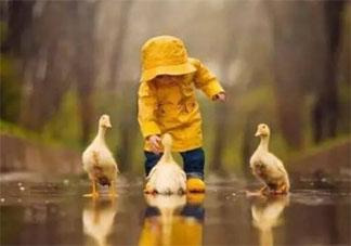 那些让你感到世界温柔的瞬间 觉得世界很温柔的心情分享