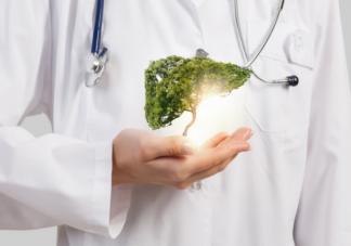 哪些食物是保肝能手 养护肝脏遵循5步法