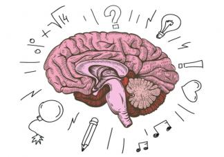 关于大脑的9个冷知识 如何保护脑健康