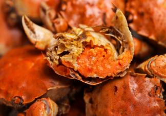 孕妇吃螃蟹会感染寄生虫吗 孕妇吃螃蟹需要注意什么