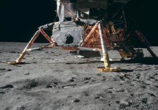 在自然状态下月球上能不能种菜 蚂蚁庄园10月20日正确答案